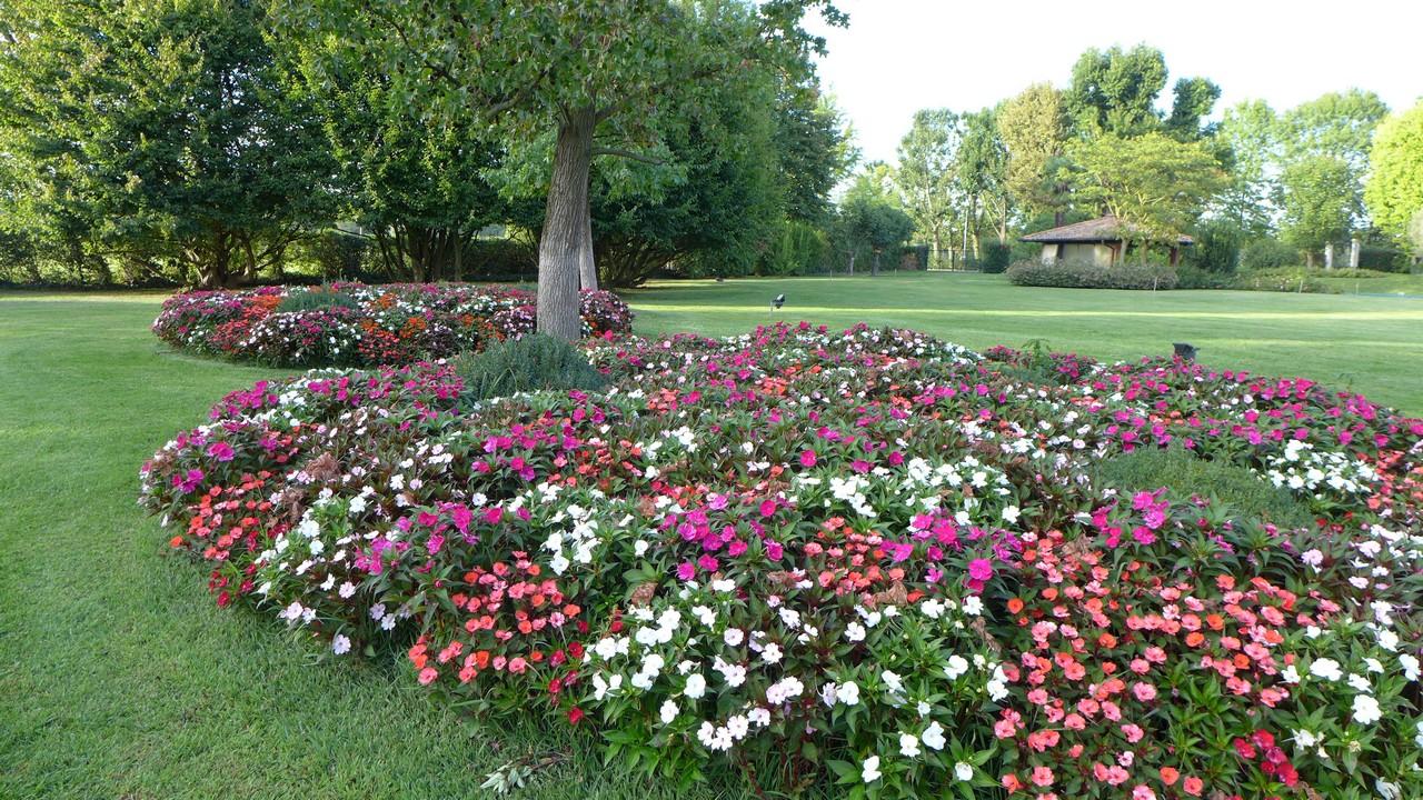 Manutenzione Giardini Milano E Provincia giardiniere milano e provincia | maggioni - magenta | novara