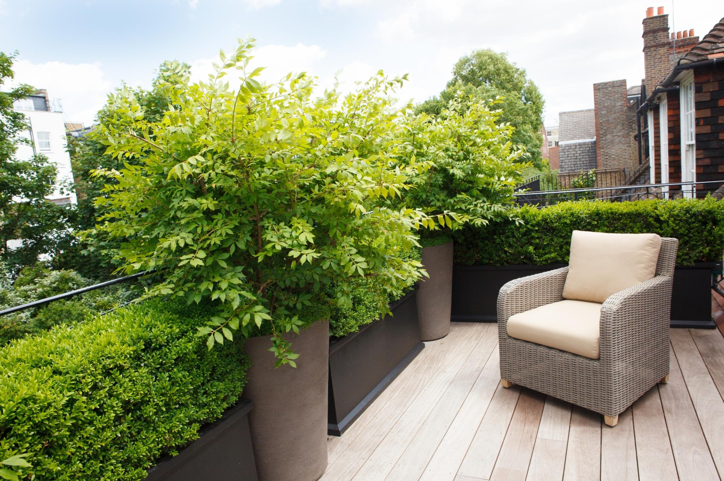 Come Fare Un Giardino Inglese il terrazzo, un posto incantevole   progettazione terrazzi