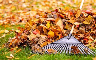 Preparare il giardino per l'autunno