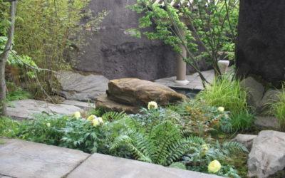Progettare il giardino ispirandosi alla natura
